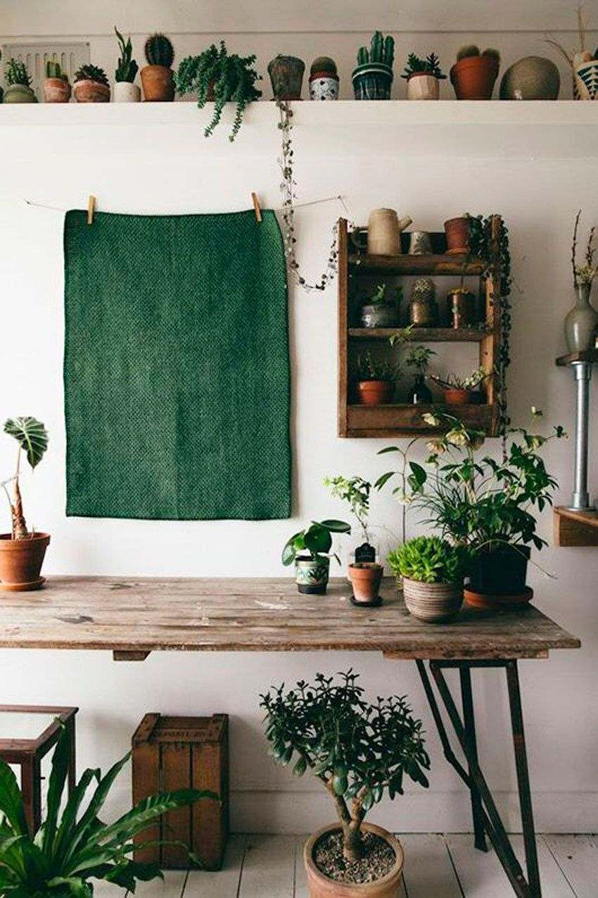thiết kế không gian xanh tại nhà
